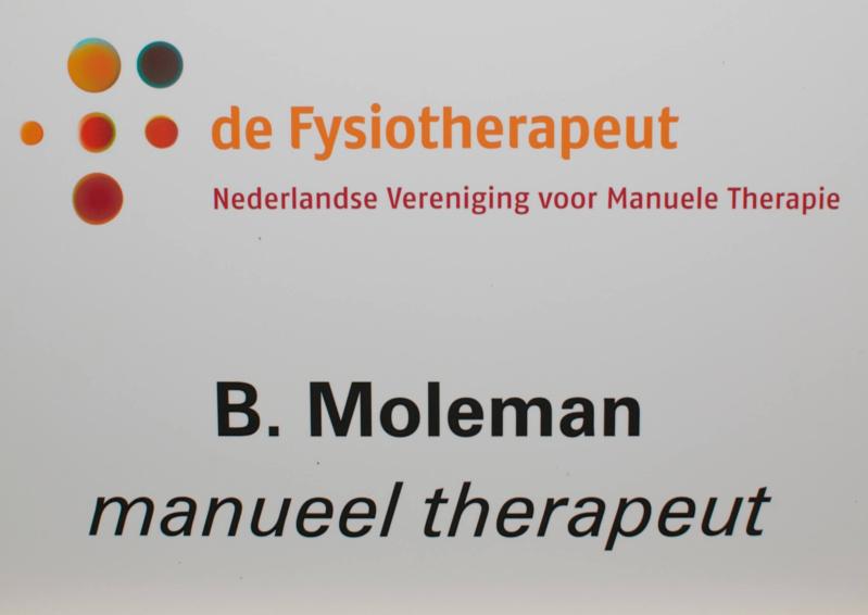 invoegen in tekst manuele therapie
